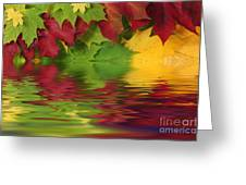 Autumn Leaves In Water With Reflection Greeting Card