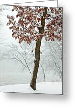 Autumn Leaves In Winter Snow Storm Greeting Card