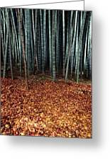 Autumn Leaves Litter The Ground Greeting Card