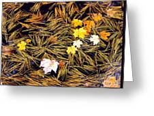 Autumn Leaves On Straw On Water Greeting Card