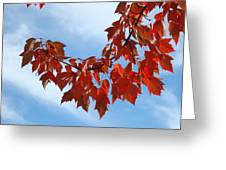 Autumn Leaves Tree Red Orange Art Prints Blue Sky White Clouds Greeting Card