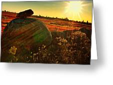 Autumn Morn In The Berry Field Greeting Card