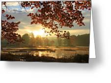 Autumn Morning At Harvard Pond Greeting Card