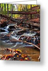 Autumn Moving Water With Foliage Greeting Card