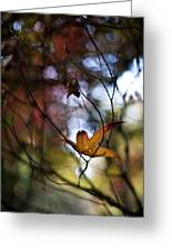 Autumn Mystere Greeting Card