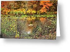 Autumn On Long Island Greeting Card