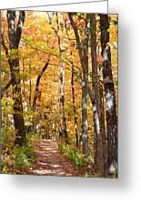 Autumn Path 2 Greeting Card
