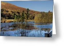 Autumn Pond 11 Greeting Card