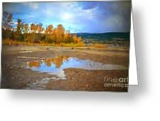 Autumn Puddles Greeting Card
