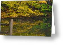 Autumn Reflections_0138 Greeting Card