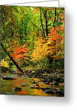 Autumn Reflects Greeting Card
