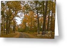 Autumn Road Colors Greeting Card
