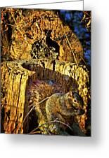 Autumn Rusticana Greeting Card