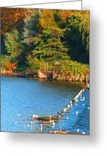 Autumn Season Greeting Card