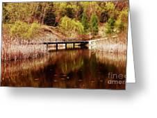 Autumn Shine  Greeting Card