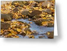 Autumn Slipping Away 0437 Greeting Card