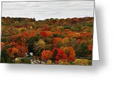 Autumn Spectacular Greeting Card