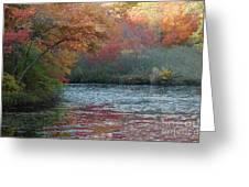 Autumn Splendor 1 Greeting Card