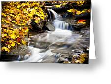 Autumn Stream No 3 Greeting Card