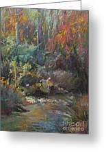 Autumn Stream Greeting Card by Pamela Pretty