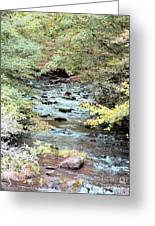 Autumn Streams Greeting Card