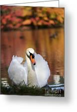 Autumn Swan Greeting Card by Leslie Leda