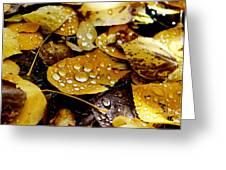 Autumn Tears Greeting Card