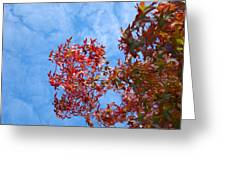 Autumn Trees Art Prints Blue Sky White Clouds Greeting Card