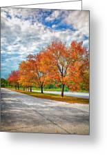 Autumn Trees At Busch Greeting Card