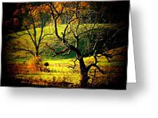 Autumn Valley Greeting Card by Michael L Kimble
