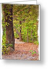 Autumn Walk - Impressions Greeting Card