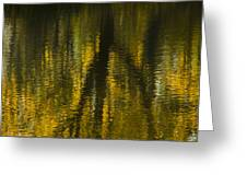 Autumn Water Reflection Abstract I Greeting Card