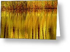 Autumn Water Reflection Abstract II Greeting Card
