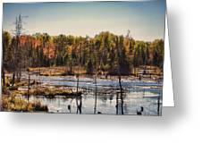 Autumn Wetland Greeting Card