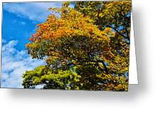 Autumnal Fruition Greeting Card