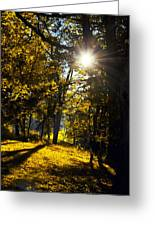 Autumnal Morning Greeting Card