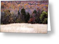 Autumnfield 2 Greeting Card