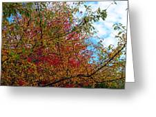 Autumns Beauty Greeting Card