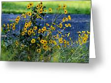 Autumn's Gold At The Lake Greeting Card
