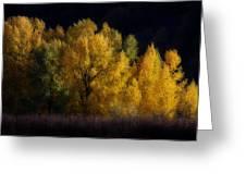 Autumn's Last Hurrah Greeting Card