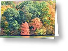 Autumn's Patchwork Greeting Card