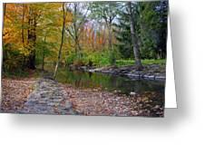 Autumn's Splendor Greeting Card