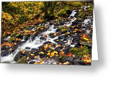Autumn's Staircase Greeting Card by Mike  Dawson