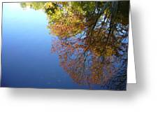 Autumn's Watery Reflection Greeting Card