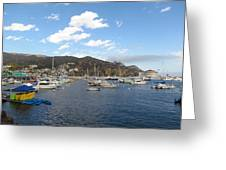 Avalon Bay Catalina Island Greeting Card