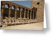 Avenue Of The Sphinx Greeting Card