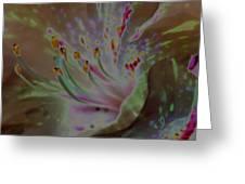 Azalea Rock Greeting Card