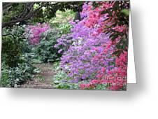Azalea Trail Greeting Card