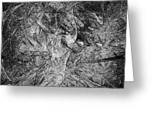 Abstraction 547 - Marucii Greeting Card