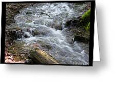 Babbling Brook Two Greeting Card